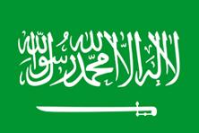 LumenSoft Partner in Saudi Arabia
